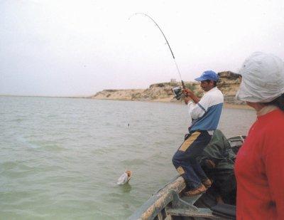 Regarder en ligne vidéo la pêche dhiver